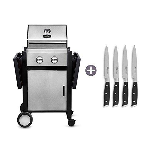 Gasgrill Barney inkl. Steakmesser-Set 4 teilig von Springlane Selection BBQ Grillwagen 2-Brenner mit batterieloser Piezozündung, klappbaren Seitenteilen, Edelstahl-Gehäuse und emailliertem